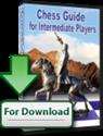 Obrázek pro výrobce Šachový průvodce pro středně pokročilé hráče (Download)