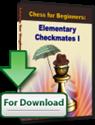 Obrázek pro výrobce ŠachMat I  - ke stažení