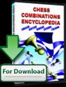 Obrázek pro výrobce Encyklopedie šachové kombinace 1 & 2 (Upgrade)