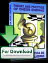 Obrázek pro výrobce Theory and Practice of Chess Ending (Upgrade)