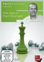 Obrázek pro výrobce First steps in pawn structures - download