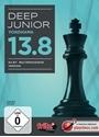 Obrázek pro výrobce Deep Junior 13.8 mulitprocessor version (Download)