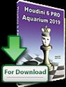 Šachy a šachové programy Aquarium 2019