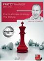 Obrázek pro výrobce Practical Chess Strategy: The Bishop (DVD)
