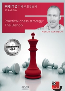 Obrázek z Practical Chess Strategy: The Bishop (DVD)